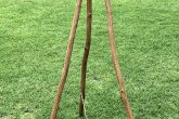 Easel Branch 2